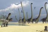 Two Allosaurus Predators Prepare for an Attack on a Herd of Omeisaurus Stampe di Stocktrek Images,