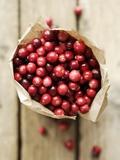 Cranberries in Paper Bag (Overhead View) Fotografisk tryk af Marc O. Finley