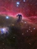 The Horsehead Nebula, Barnard 33 in the Orion Constellation Fotografisk trykk av Stocktrek Images,