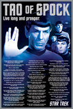 Star Trek- Tao Of Spock Print