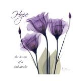 Hope Tulip Stampa giclée premium di Albert Koetsier