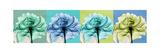 Blue Green Flowers 1 Premium Giclee-trykk av Albert Koetsier