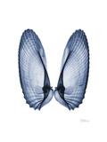 Angel Wings Premium gicléedruk van Albert Koetsier