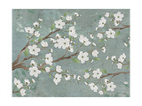 Cherry Blossoms Gray Prints by Diane Stimson