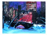 New York City - Central Park Winter Posters par M Bleichner