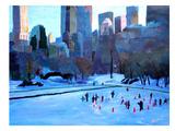 New York City - Central Park Winter Ice 2 Art by M Bleichner