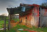 Hay in Red Barn Fotografisk trykk av Bob Rouse