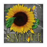 Sunflowers Chalkboard Giclée-Druck von Asmaa' Murad