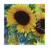 Sunflowers Rain or Shine Giclée-Druck von Asmaa' Murad