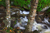Cole Creek Fotografisk trykk av Bob Rouse