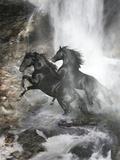 Pferde Fotografie-Druck von Bob Langrish