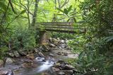 Alum Cave Trail Bridge Fotografisk trykk av Bob Rouse