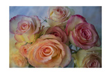 Bunch of Roses Giclee-trykk av Bob Rouse