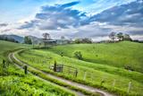 Winding Road Fotografisk trykk av Bob Rouse