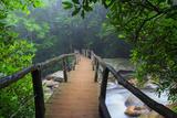 Wooden Bridge in Fog Fotografisk trykk av Bob Rouse