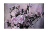 Passion Pink Giclee-trykk av Bob Rouse