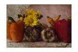 Summer Harvest Giclee-trykk av Bob Rouse
