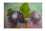 Vintage Bouquet Giclee-trykk av Bob Rouse