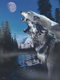 Silvery Moon Fotoprint van Gordon Semmens