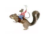 Squirrel Rodeo Lámina giclée por  J Hovenstine Studios