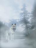 White Mist 2 Fotografie-Druck von Gordon Semmens