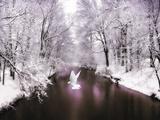 Friede auf Erden Fotografie-Druck von Jessica Jenney
