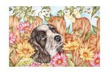 Butterfly Pup Impressão giclée por Karen Middleton