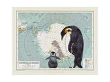 Antartica Giclée-tryk af Jane Wilson