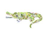 Crocodile Giclée-tryk af Louise Tate