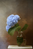 Blue Hydrangea in a Vase Giclee Print by Jai Johnson
