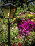 Street Lamp Photographic Print by J.D. Mcfarlan