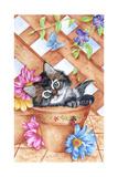 Trellis Kitty Impressão giclée por Karen Middleton