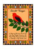Scarlet Tanager Quilt Reproduction procédé giclée par Mark Frost