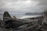 Beach Photographic Print by J.D. Mcfarlan