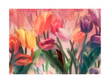 Tulip Flamenco Giclee Print by Mindy Sommers