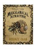 Hermit Crab Giclee Print by Michael Murdock