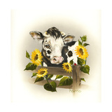 Cow and Sunflowers Giclee Print by Peggy Harris