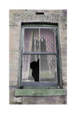 Broken Window with Tattered Curtains Giclee Print by Nora Hernandez