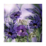Purple Dream I Giclee Print by Mindy Sommers