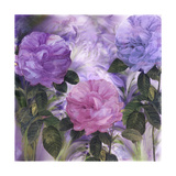 Purple Dream III Giclee Print by Mindy Sommers