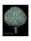 Artichoke Giclee Print by Mindy Sommers