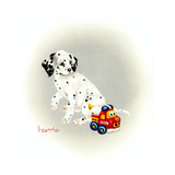 Dalmation 1 - Puppy Truck Giclee Print by Peggy Harris