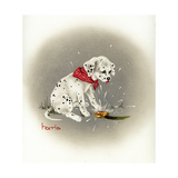 Dalmation 3- Sprinkles Giclee Print by Peggy Harris
