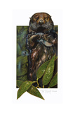 Sea Otter Giclee Print by Tim Knepp