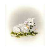 Little Lambsy Divey Giclee Print by Peggy Harris