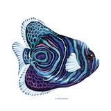 New Fish 3 Reproduction procédé giclée par Olga And Alexey Drozdov