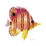 New Fish 4 Reproduction procédé giclée par Olga And Alexey Drozdov