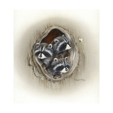 Raccoons in Hole Giclee Print by Peggy Harris