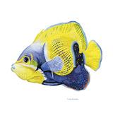 Fish 3 Blue-Yellow Reproduction procédé giclée par Olga And Alexey Drozdov