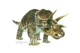 Triceratops Giclee Print by Tim Knepp